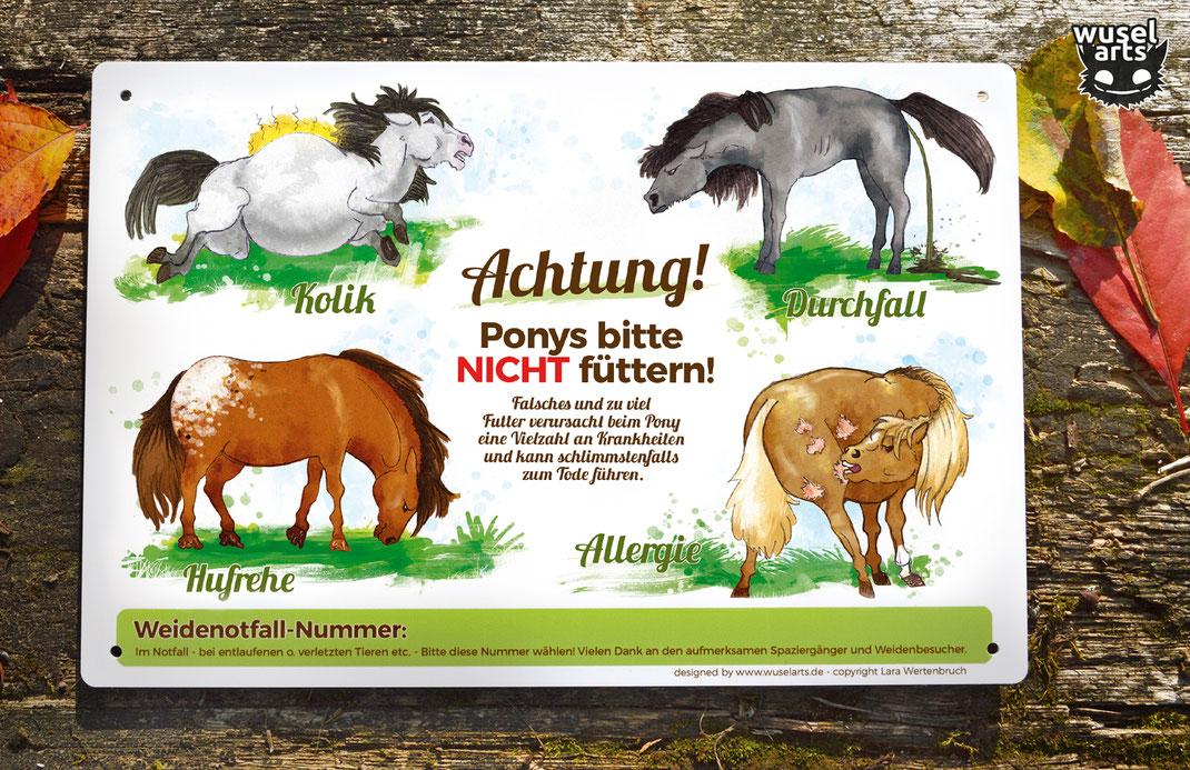 Ponys bitte nicht füttern! Hufrehe, Kolik, Allergie oder Durchfall sind schlimme Folgen von falschem Futter an der Pony Weide