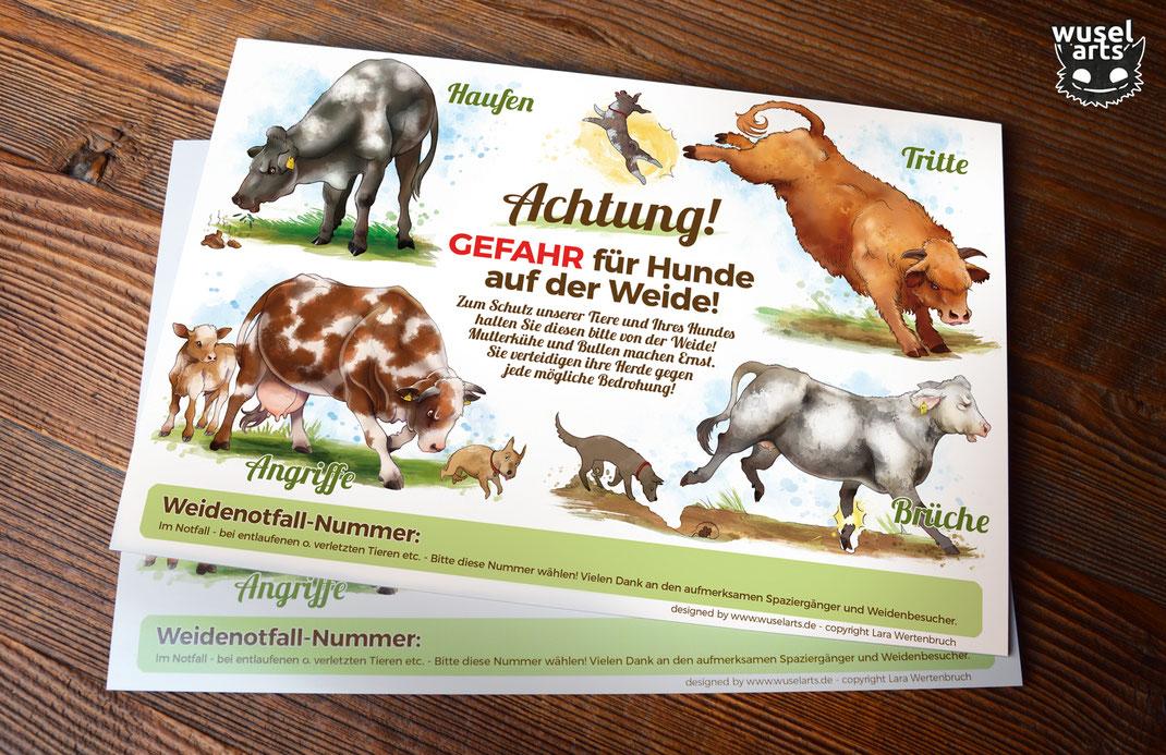 Kühe bitte nicht füttern Schild, Rinder Schild, Kuh füttern verboten, Kuh greift an