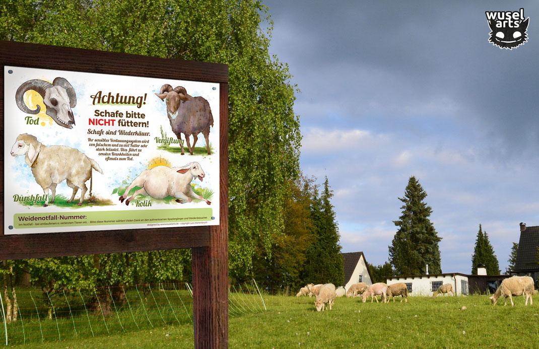 """Schafweide mit """"Schafe bitte nicht füttern!"""" Schild das auf einem Holzaufsteller befestigt ist - falsches Futter führt schlimmstenfalls zum Tod"""