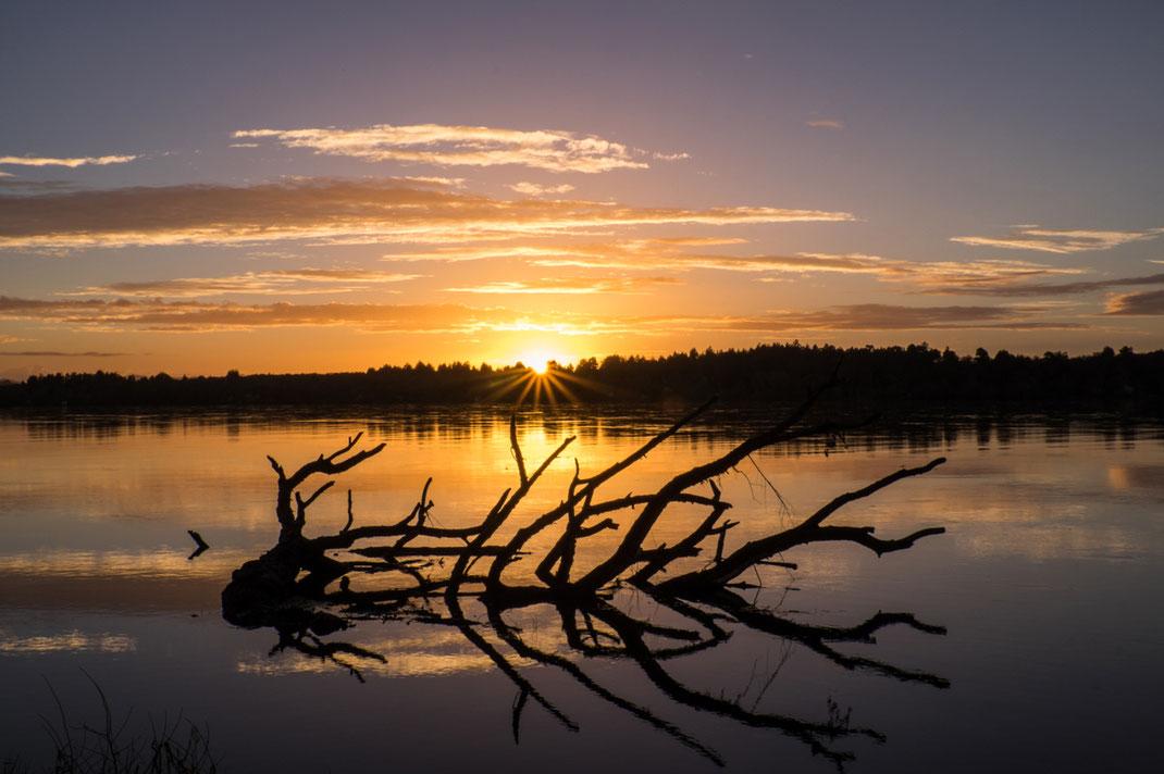 Mit (jaja mal wieder) Käffchen in der Hand, genießen wir den Sonnenaufgang am Waikato River