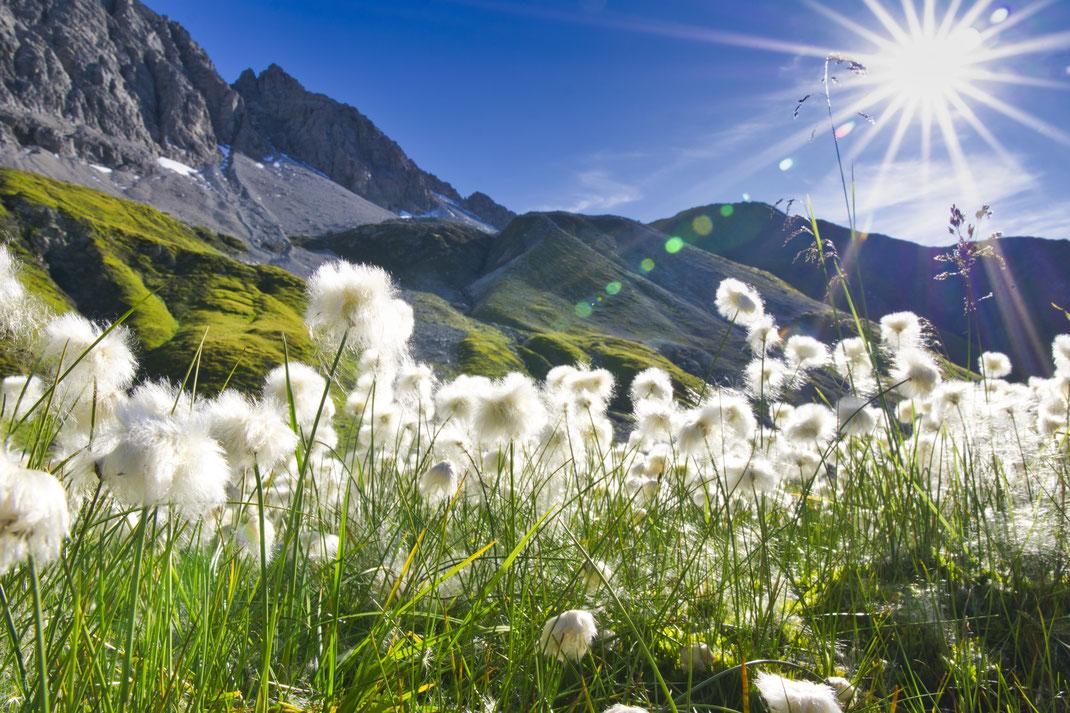 tirol lech lechtaler alpen hiking sigma16mmf14 sigma a6000 reisefotografie travelfoto sony 16mm