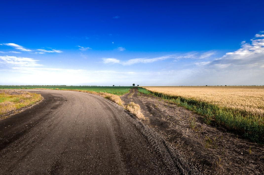 Russlands unendliche Weizenfelder kostenlos herunterladen