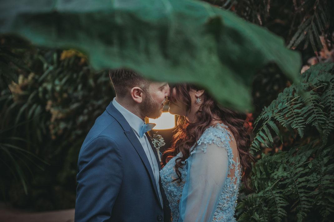 Fotograf für türkische Verlobung und Fotos im Palmengarten Frankfurt am Main oder Umgebung