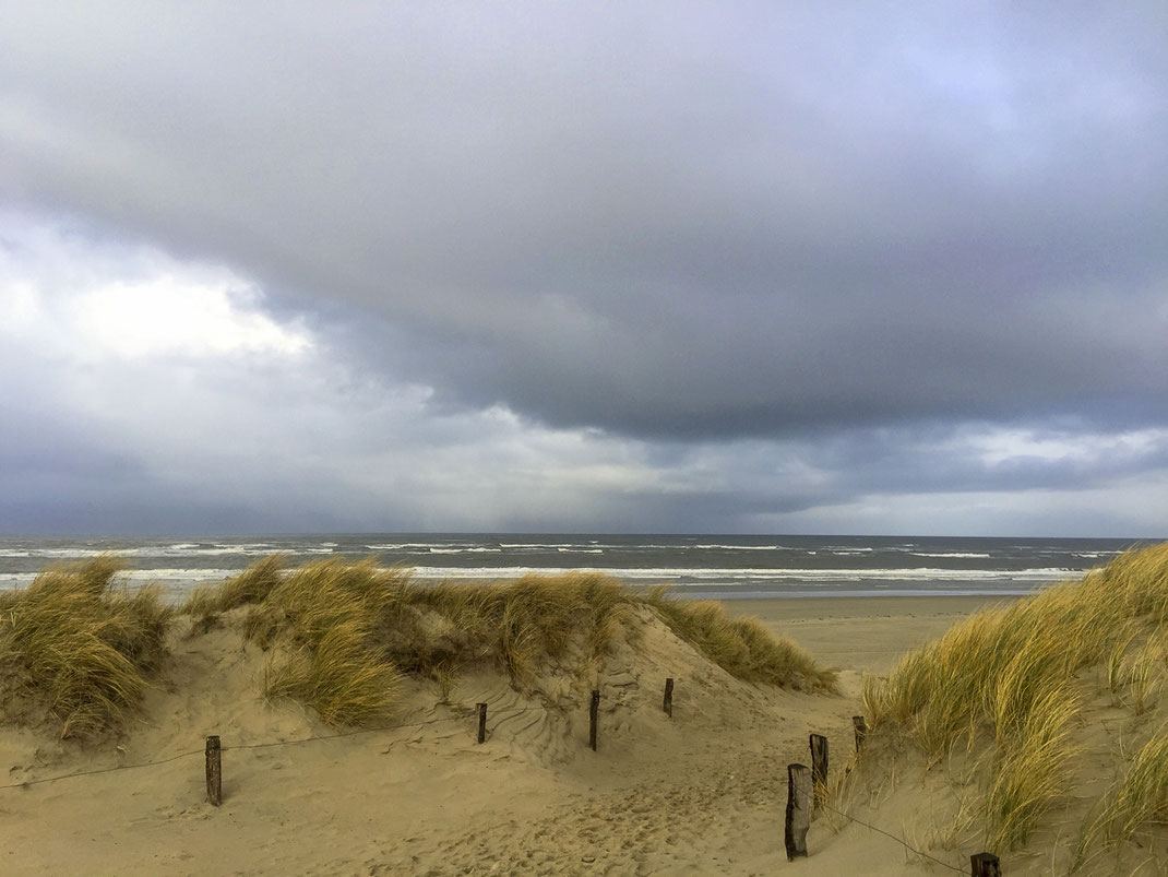 Winter, Nordsee, Langeoog, Nikon, Urlaub, Ostfriesland