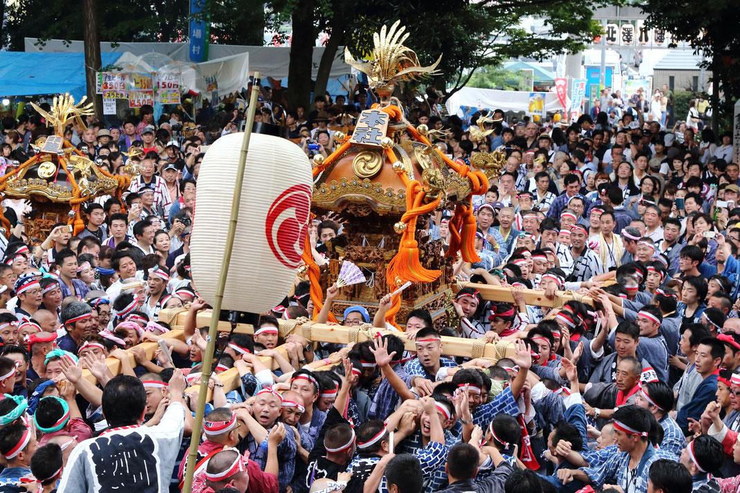 北澤八幡神社 御鎮座550記念 例大祭, 宮神輿渡御, 2018年9月1日-2日