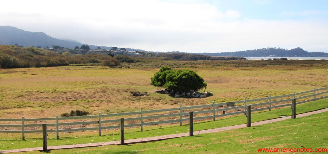 Blick über die Gegend um die Mission Ranch in Carmel-by-the-Sea, Monterey Halbinsel, Kalifornien, USA