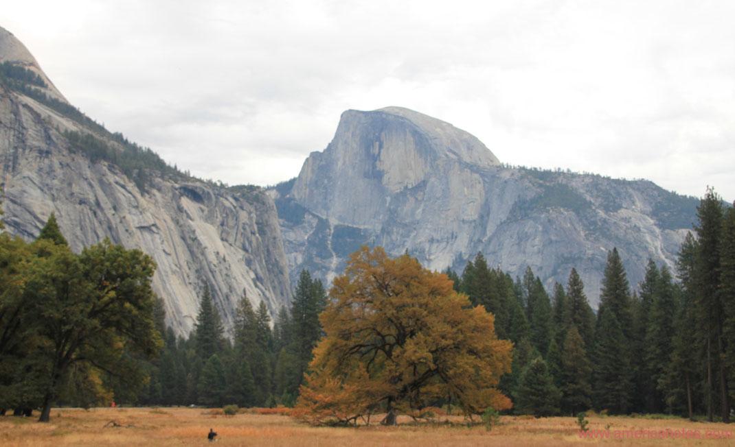 Sehenswürdigkeiten und Nationalparks in Kalifornien. Half Dome im Yosemite Nationalpark.