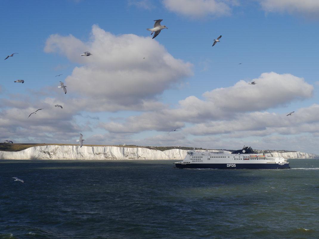 Kurz nach dem Ablegen aus dem Hafen von Dover kommt uns ein Schiff von DFDS aus Dünkirchen entgegen
