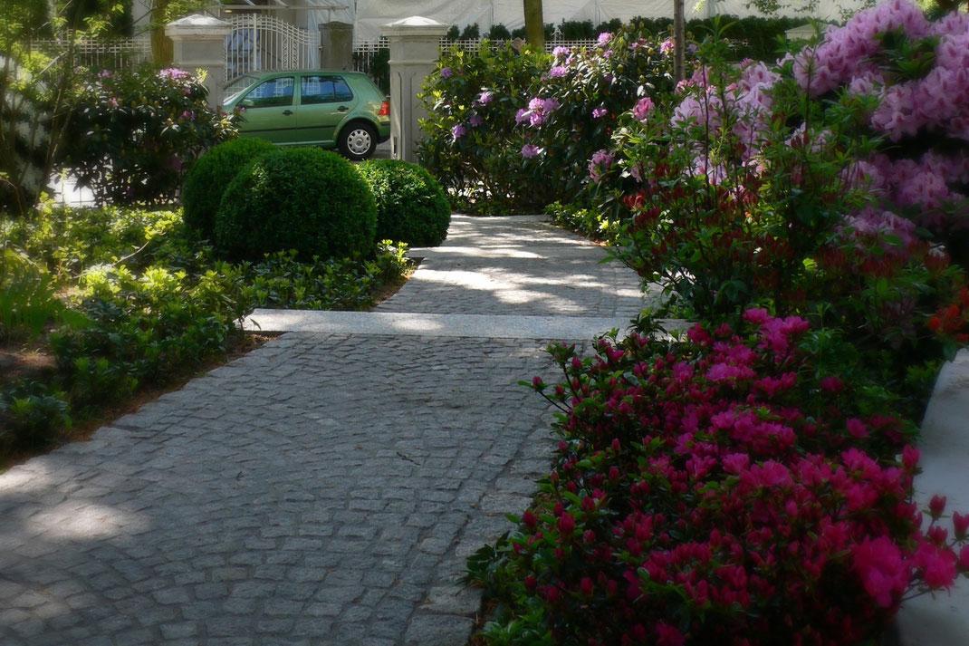 Materialkontrast auf dem Weg (glatt, grob), Komplementär-Farbkontrast und Helligkeitskontrast bei den Pflanzen, Formkontrast rund, flach, strauchig ...