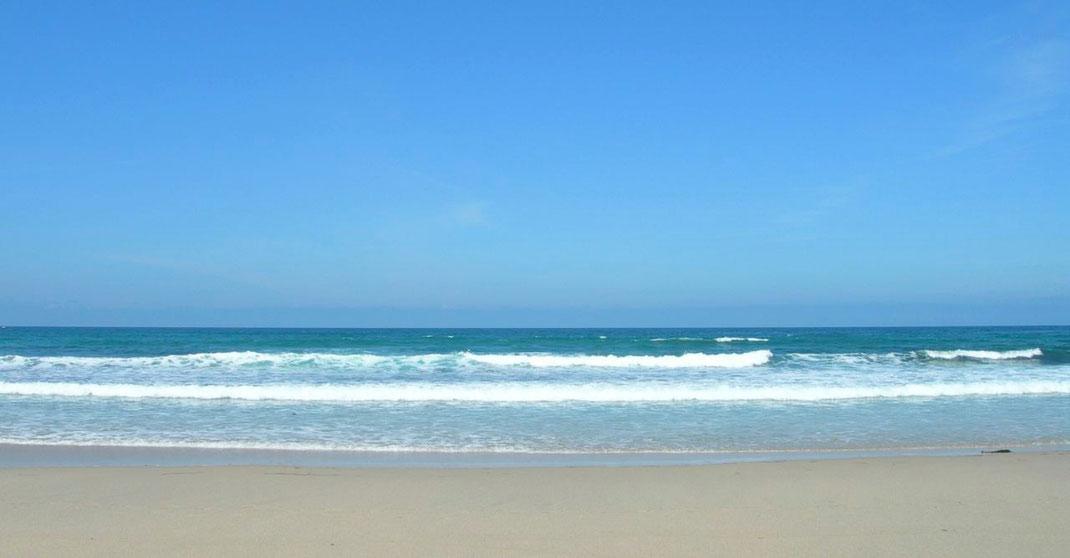 Die perfekte Strandlektüre