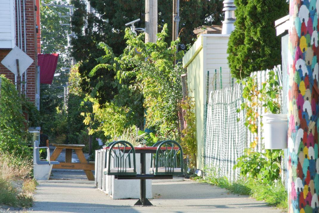 fabrication de grand bac à fleur en aluminium pour ruelle verte