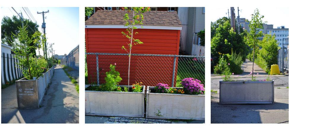 bacs à fleurs pour ruelle verte de LARTISNICK