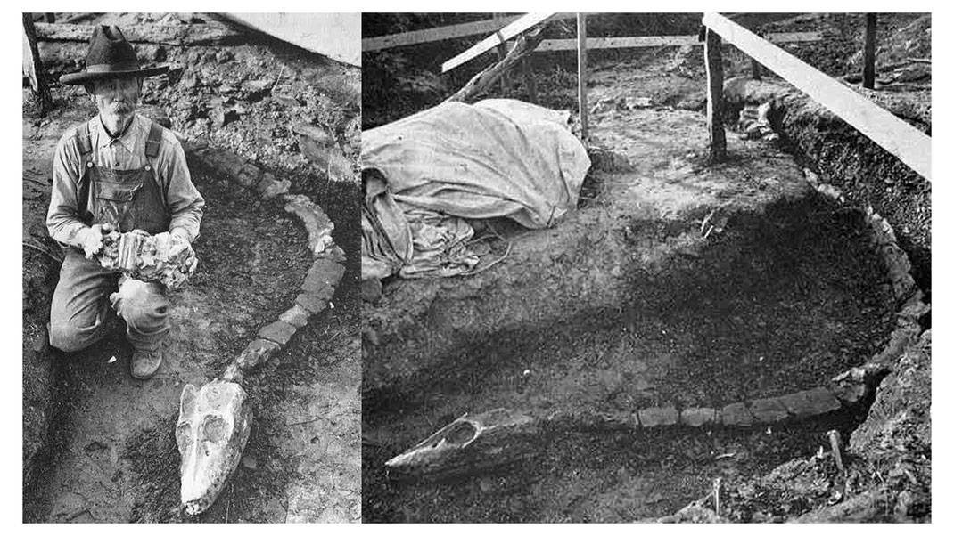 Excavation of the Libonectes holotype