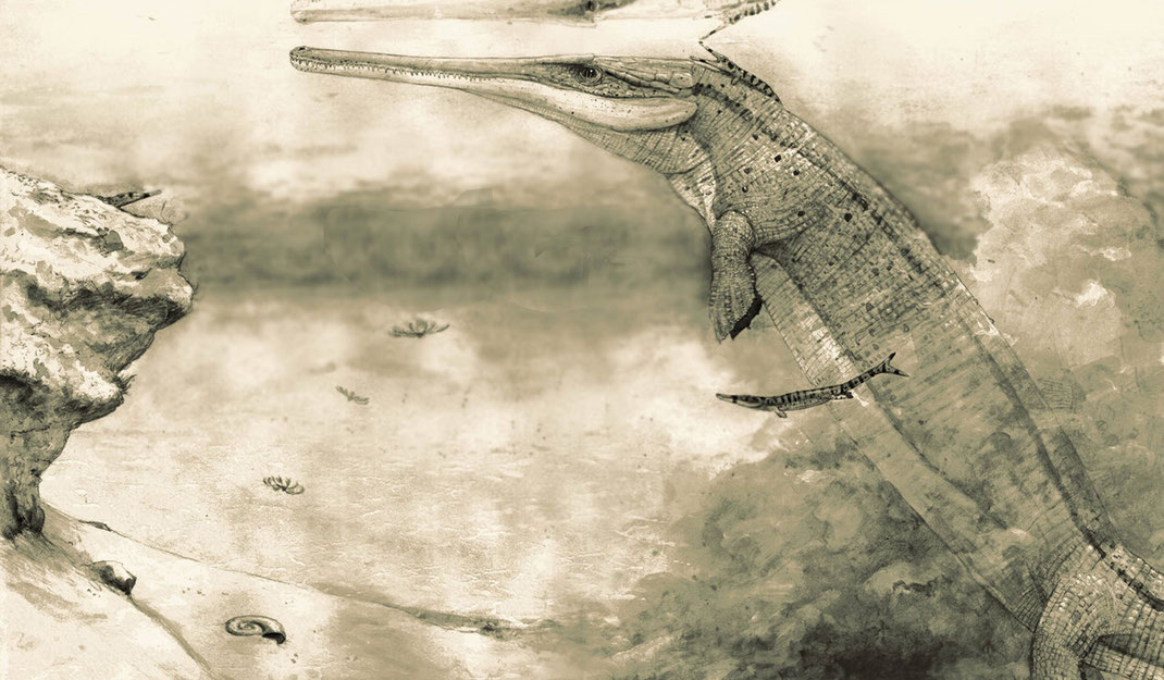 Life reconstruction of Cricosaurus