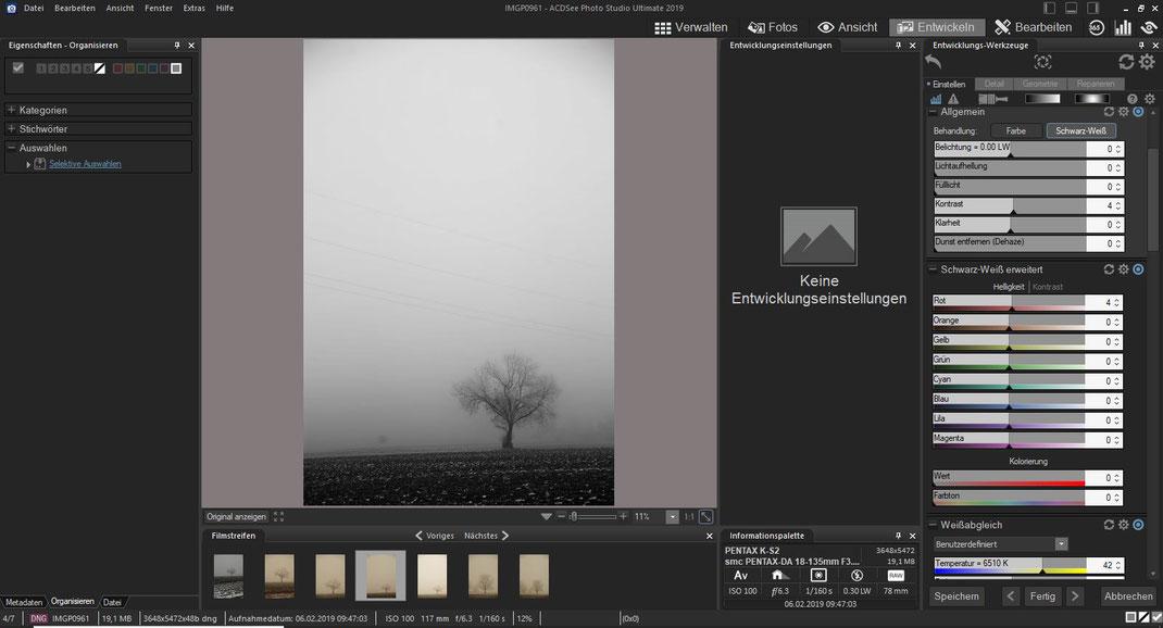 ACDSee Photo Studio - Entwickeln