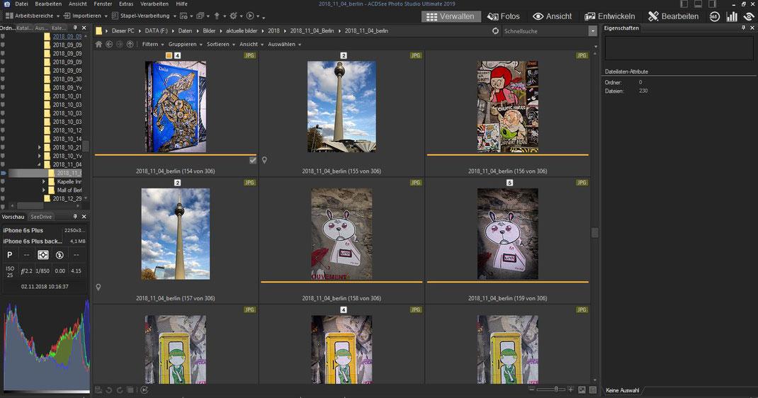 ACDSee Photo Studio - Ansicht Verwalten