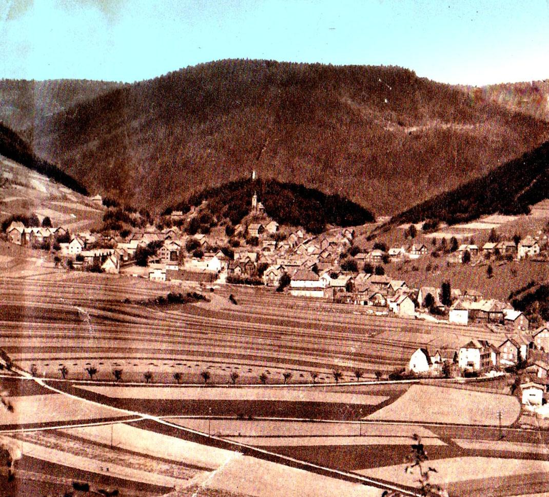 Die Ackerterrassen in Rauenstein ziehen sich vom Muschelkalkplateau die Schieferhänge hinauf (rechts und links), Archiv Kirchner, 1920er Jahre