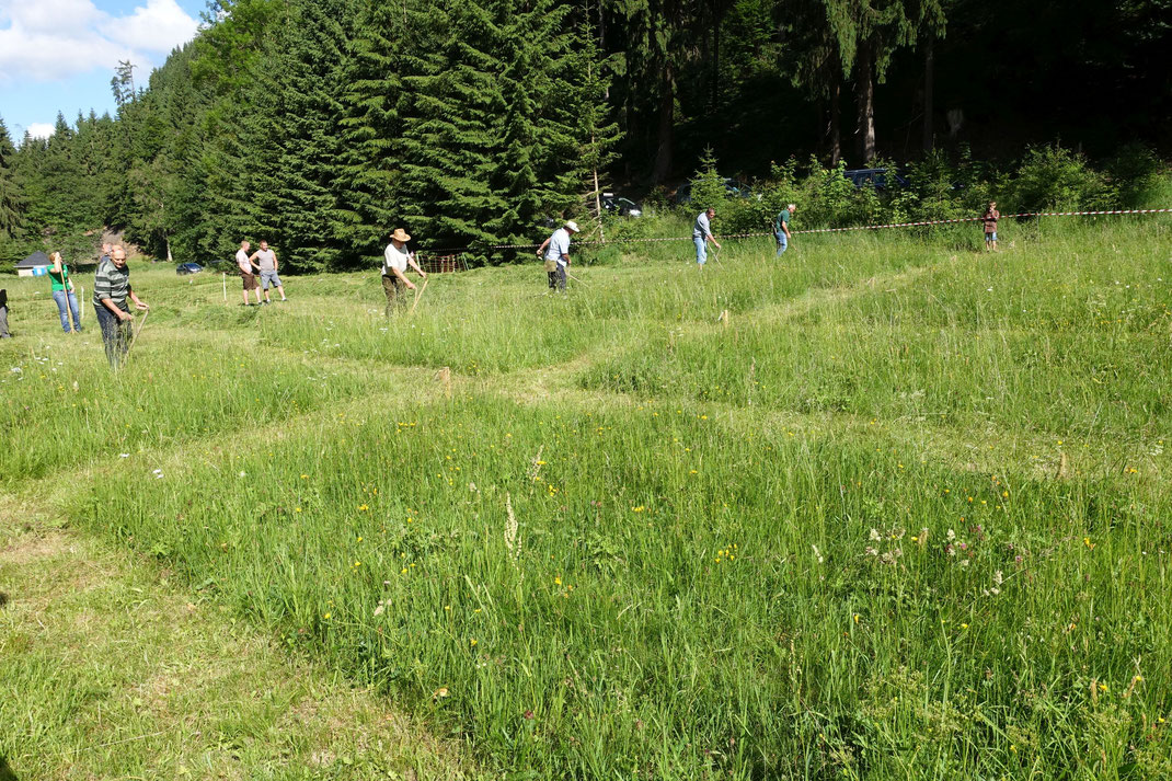 Wettkampfstrecke des Mähwettbewerbes beim Bergwiesenfest in Scheibe-Alsbach