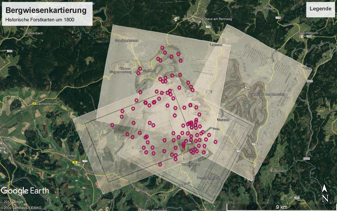 Wiesen auf den Herzoglichen Forstkarten um 1800 (1797 - 1810) im Untersuchungsgebiet