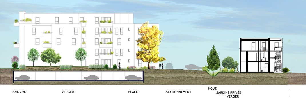// Coupe de l'îlot, ses bâtiments mixtes, sa végétation diversifiée et un jardin de promenade.