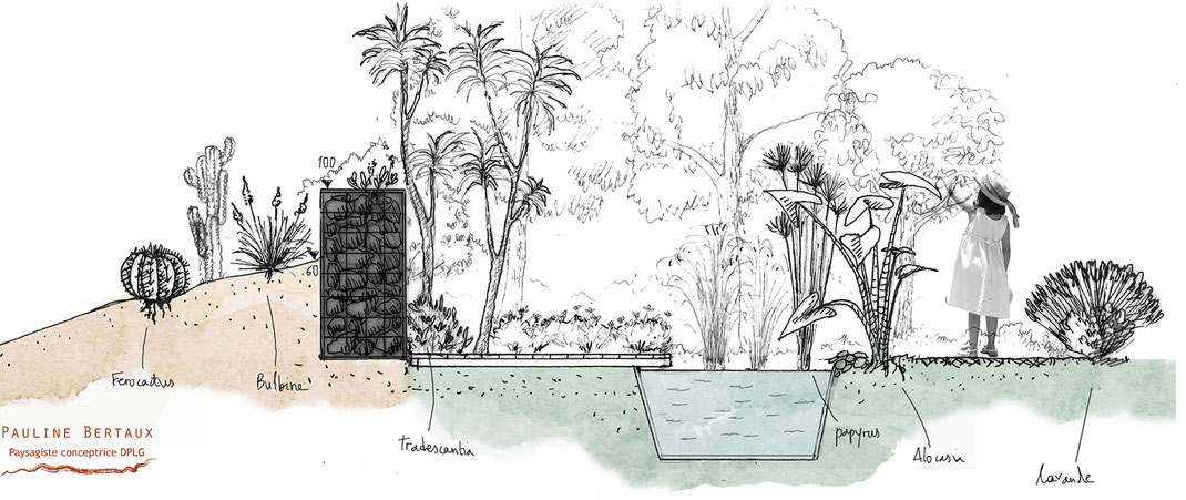 Un rêve de jardin, vue en coupe