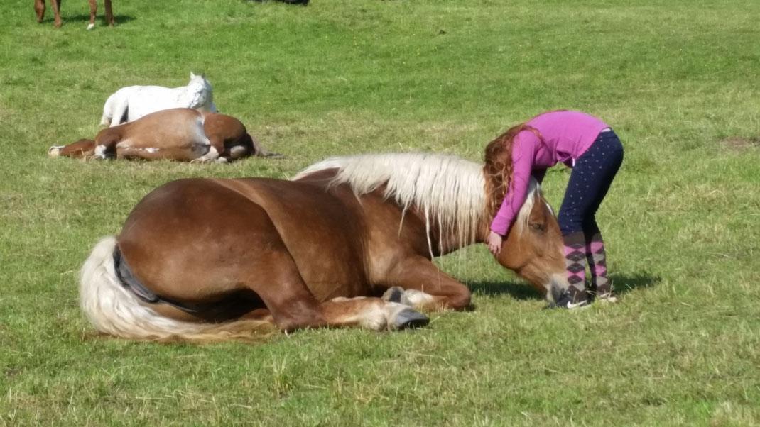 Damit unsere Pferde entpannen können, legen wir uns ins Zeug und sind immer für sie da.