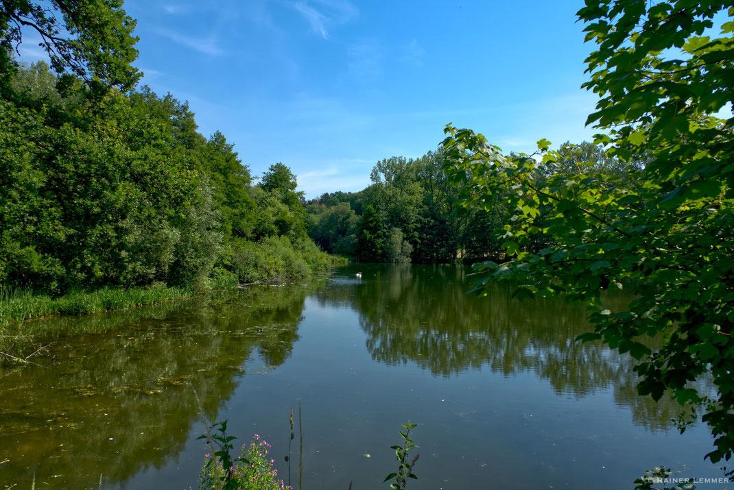 Teichanlagen Fürstlich Wiedische Forstanlagen