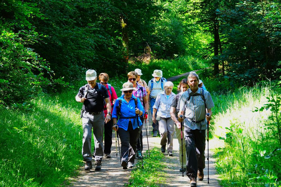 """""""Donnerstags-Wandergruppe"""" auf dem Hunsrückbahn-Wanderweg"""