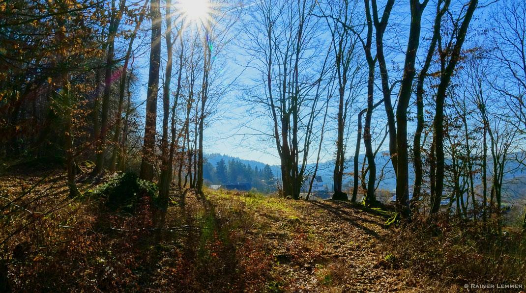 Etappe 15 WW-Steig bei Roßbach