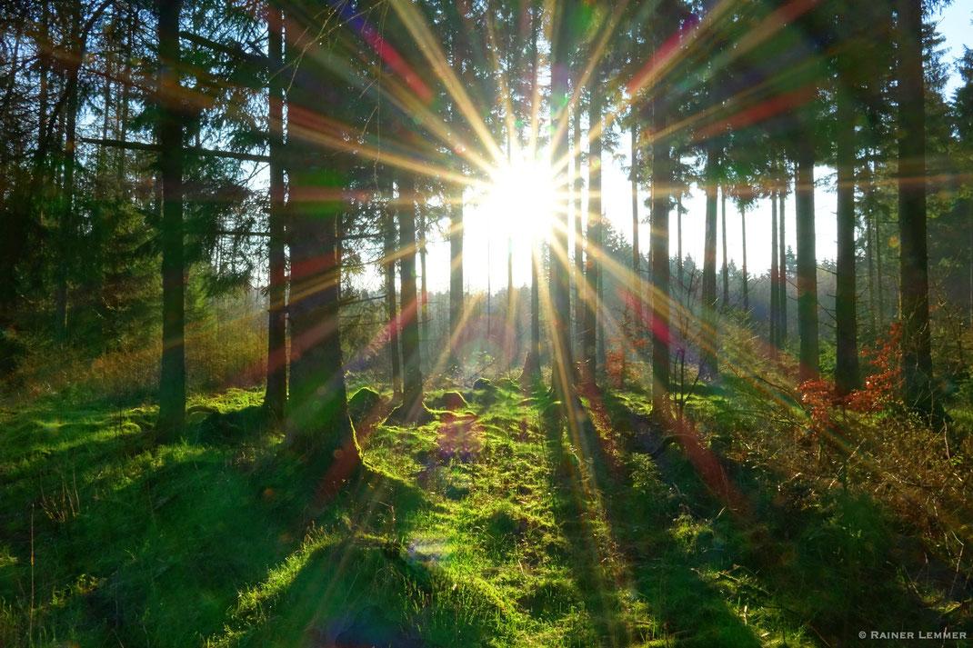 Morgensonne bei Rotenhain