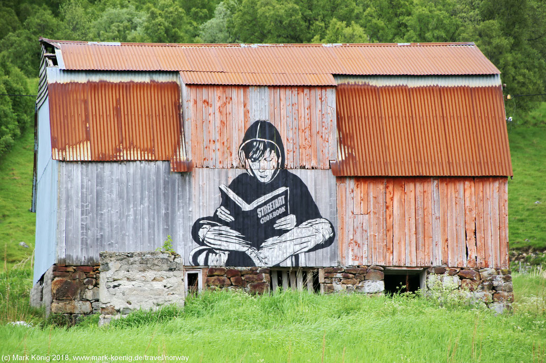 Photo showing a street art picture of a sitting and book reading person painted on an old grey wooden barn with a rusty tinroof