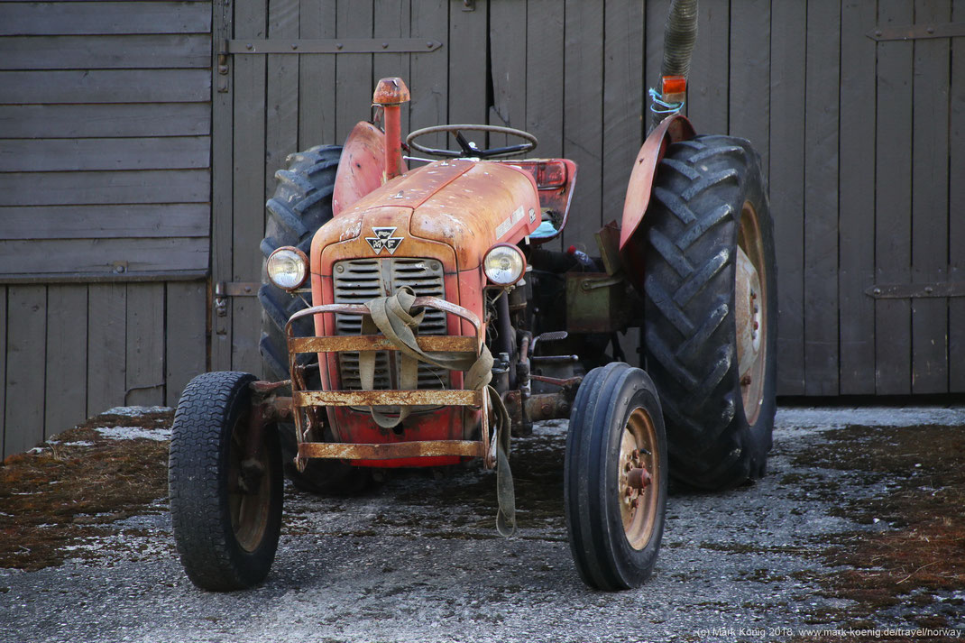Photo showing an old Massey Ferguson 35 farm tractor from the front standing on a ramp