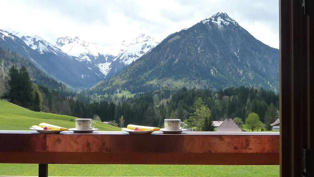 Bergblick - grüne Wiese - Landschaft - Balkon