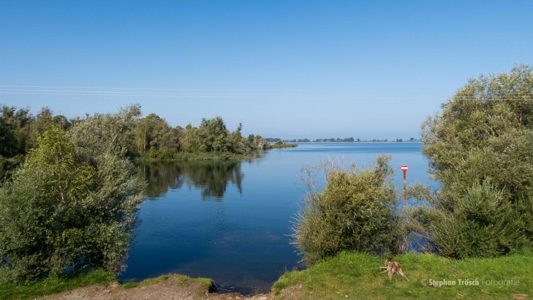 Blick in die Fussacher Bucht vom Parkplatz Sanddelta aus   Foto: Stephan Trösch (30.08.19)