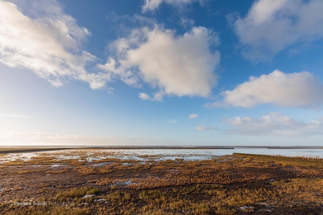 Südwesthörn, Küstenbereich mit Vorland | 21.01.2019
