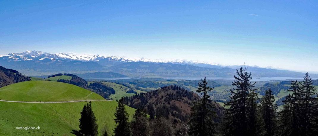 Schneebedeckte Berge, Zürich See, grüne Wiesen, Wälder, blauer Himmel