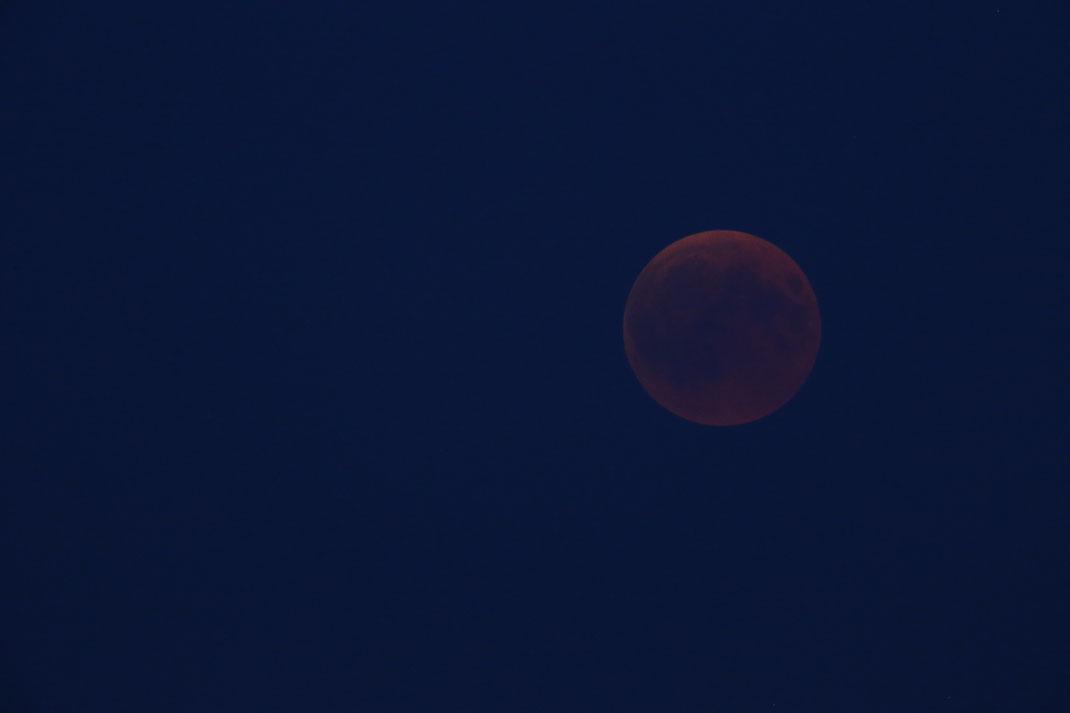 Ziemlich am Anfang, man sieht noch ein wenig blauen Himmel. Der Mond war gerade so durchs Objektiv zu sehen.