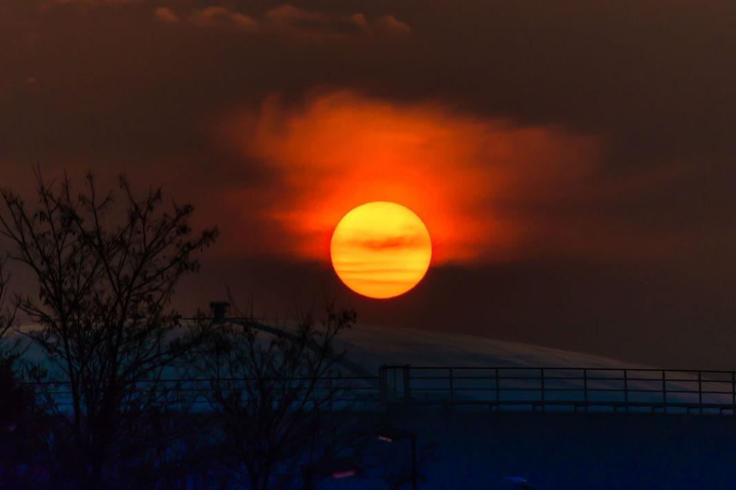 Ein Feuerball am Himmel - Tagesanbruch-Sonnenaufgang in Flörsheim-Hessen