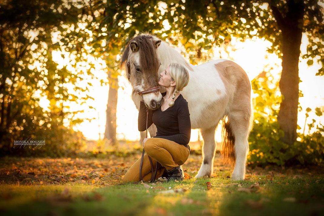 Pferd und Mensch im Sonnenuntergang