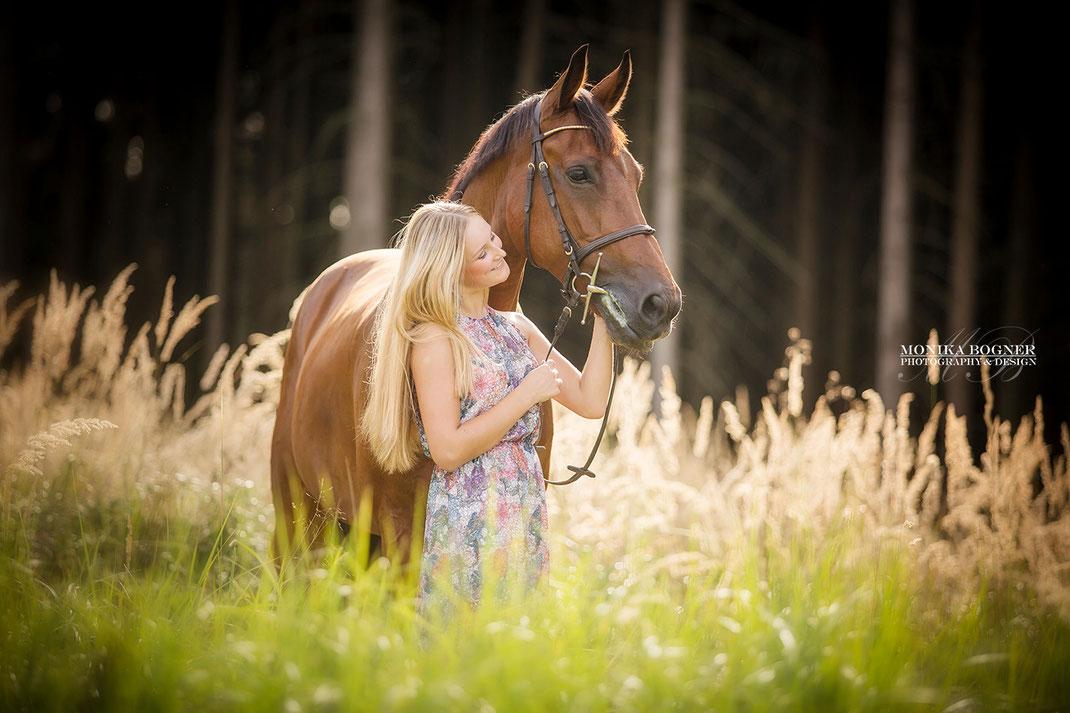 Schmusebilder mit Pferd und Mensch