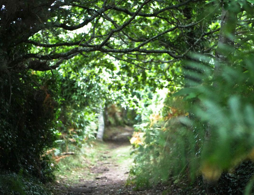 Bretagne, randonnées
