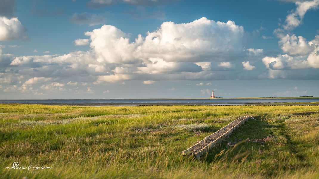 fotograf sankt peter-ording, westerhever leuchtturm, westerheversand, salzwiesen, nordsee, wattenmeer, tümmlauer bucht, nordseebilder, fotos nordsee, heiraten auf dem leuchtturm