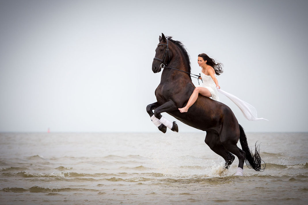 trash the dress, Pferd, braut, hochzeit, nordsee, frau, schleier, fotograf st. peter-ording,