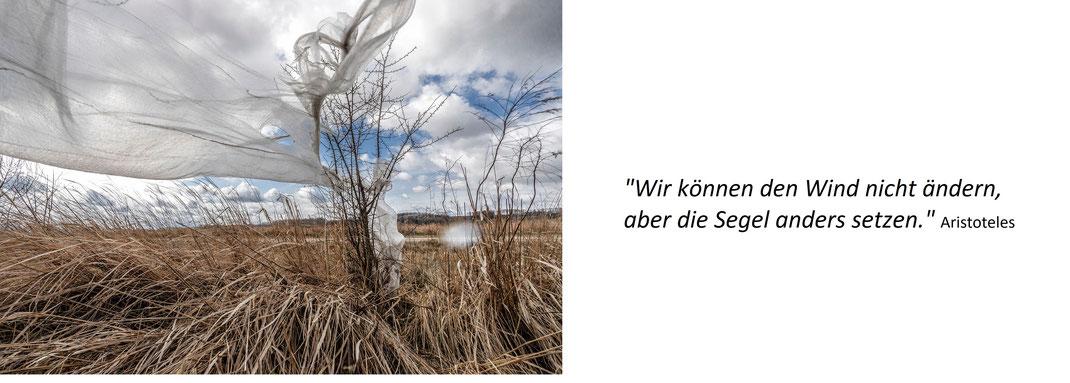 """Hier ist eine zu Rahmenbedingungen passende Aufnahme mit einem Zitat von Aristoteles: """"Wir können den Wind nicht ändern, aber die Segel anders setzen."""""""