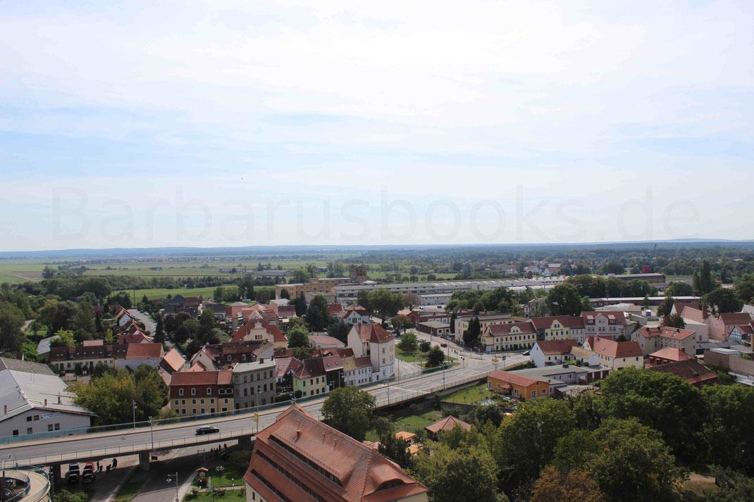 Weitere Ansicht der Stadt Torgau