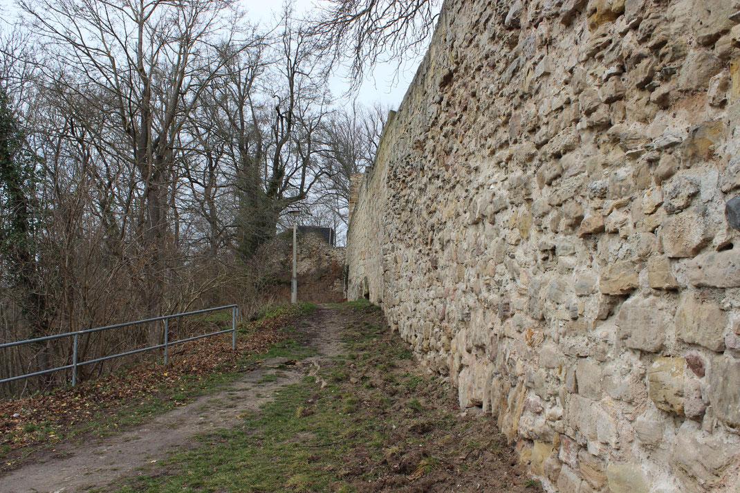Ansicht der äußeren Ringmauer von außen betrachtet, ein stückweit sogar zu belaufen möglich.