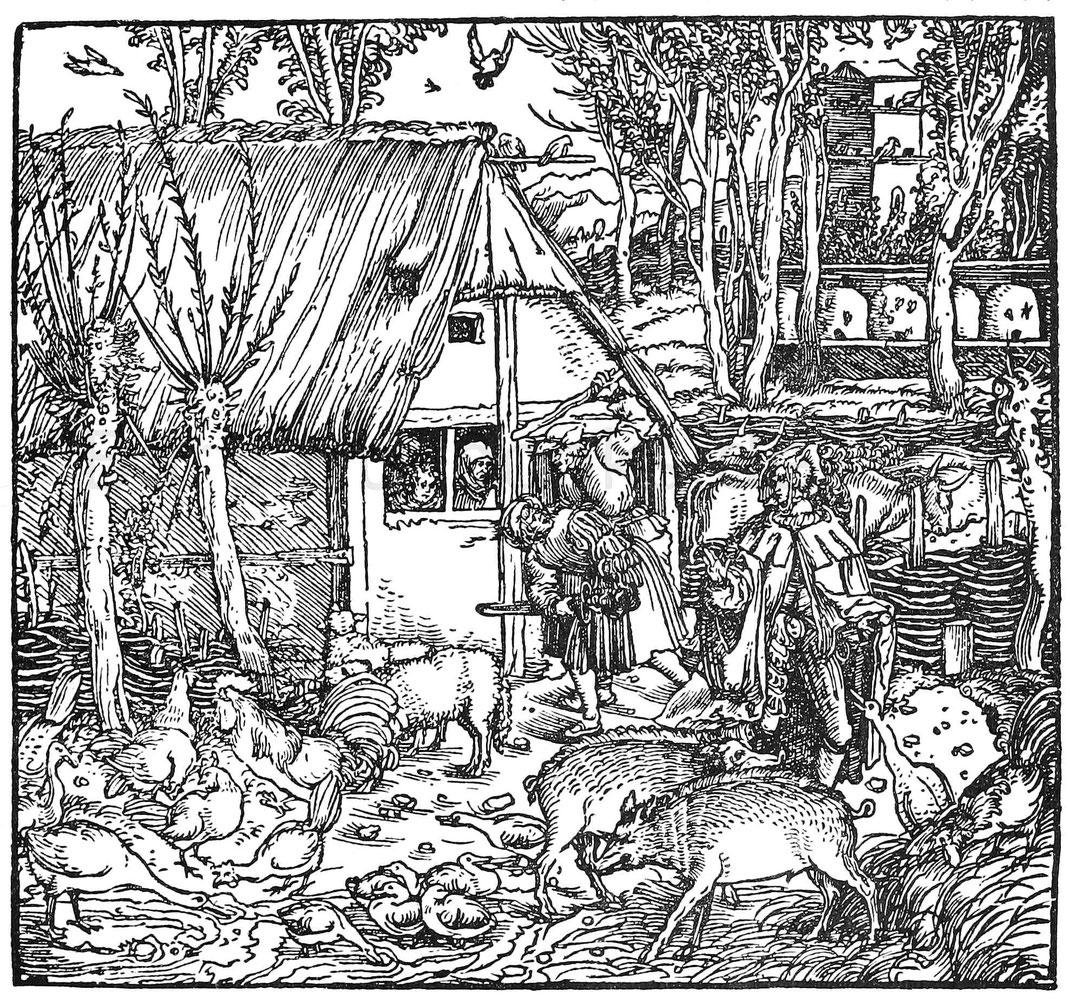 Gartende Landsknechte im 16. Jhd. Holzschnitt aus Petrarcas Trostspiegel. Augsburg, Steyner 1539.