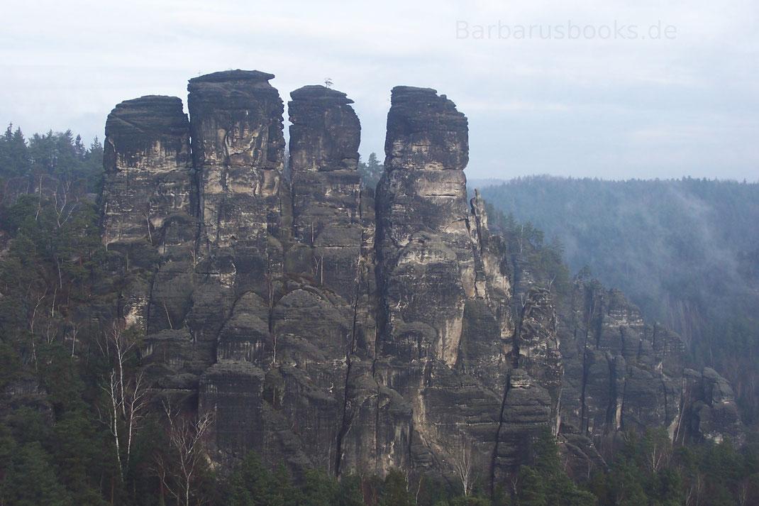 Vier Felsformationen Gansfelsen Bastei Sächsische Schweiz