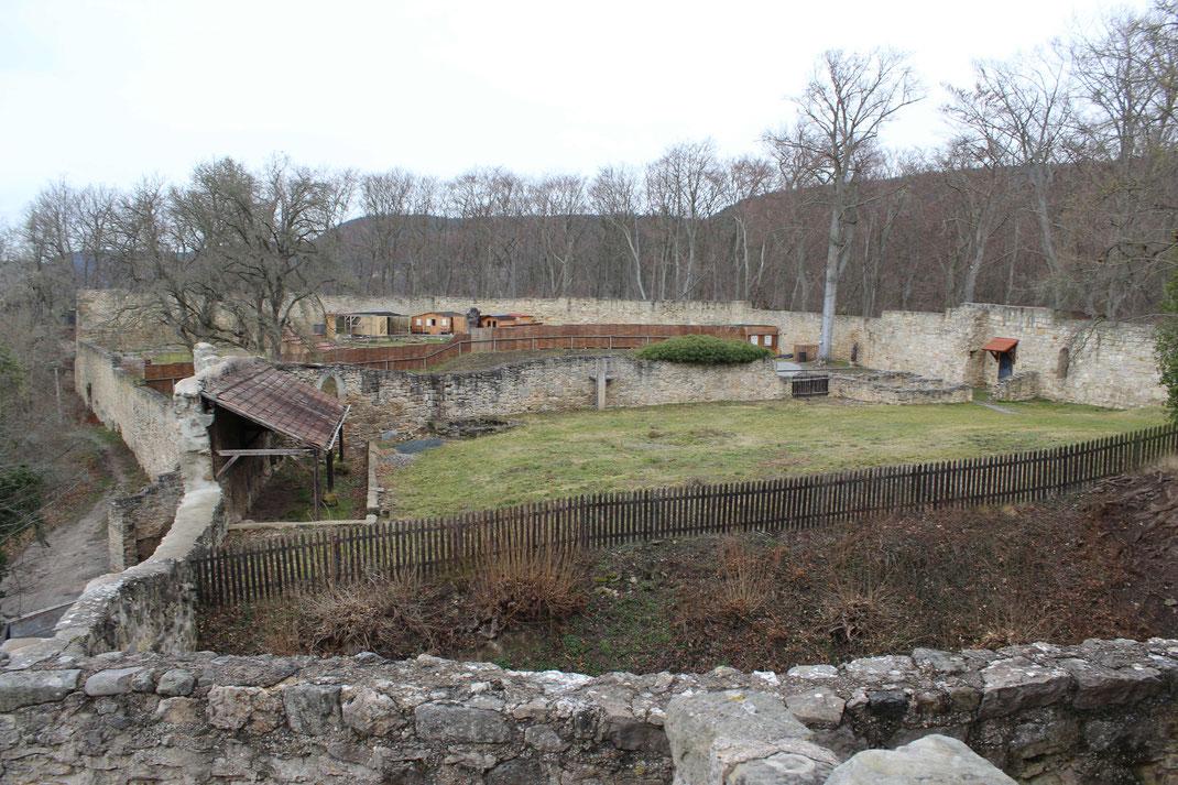 Blick auf dem riesigen Burghof der Greifenstein.