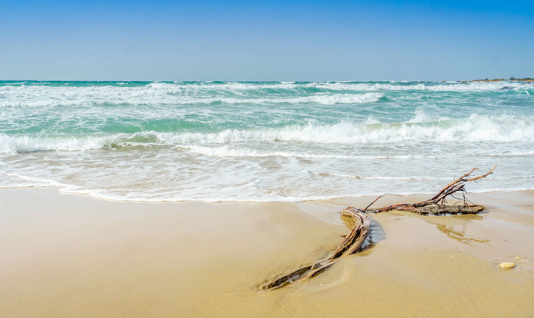 Puglia offers numerous splendid beaches, with white sand and crystal clear water. Check out the locations on the map!